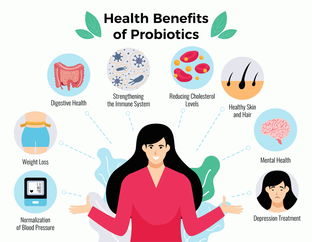 Probiotics health benefits infograph